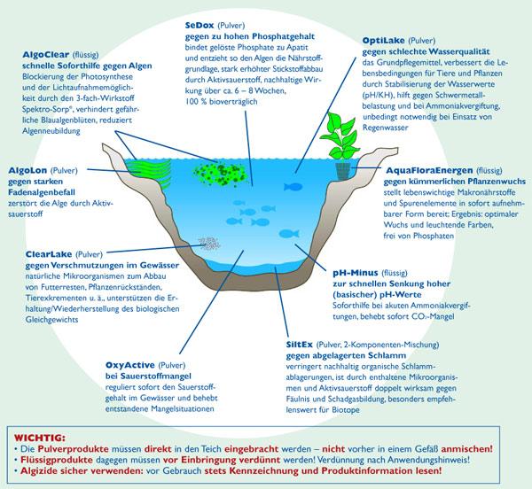 Lavaris Teichpflege Algen Schwimmteich Naturpool Bioschwimmbad